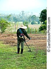 The Gardener cutting green grass