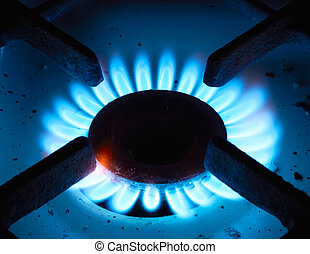 The gas burner