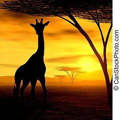 Illustration of an african giraffe