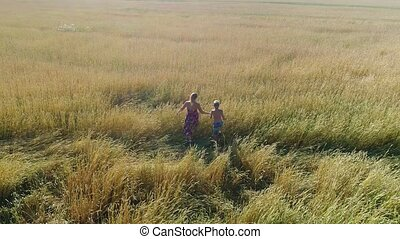 the girl and her baby are walking through a wheat field. Shooting from a drone. Leisure and entertainment in the open air