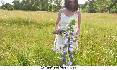 The girl in the field collects wildflowers. Girl nature summer freedom lifestyle