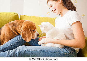 the girl is playing with animals - the dog, the cat, and the...
