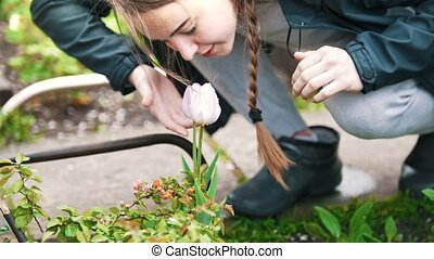 The girl leans over to sniff the flower in the garden,...