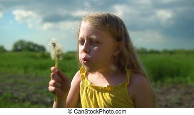 The girl plays with a dandelion shooting close-up against the background of green grass and blue sky with light long hair on the field. Green grass