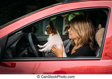 The girl sits behind in a car in the driver's seat and the Papillon dog stands with paws on the steering wheel