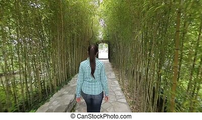 The girl walks on a bamboo grove. Tracking frame behind a...