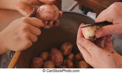 The girls from the manicure cleans the young potatoes over a bucket.