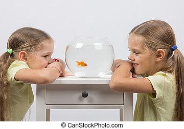 The girls watching the behavior of goldfish