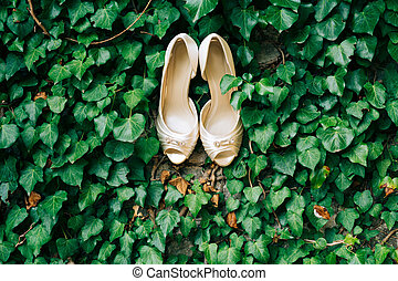 The golden shoes of the bride on a green ivy background.