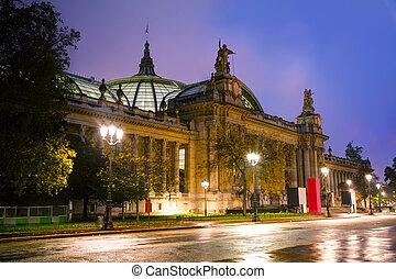 The Grand Palais des Champs-Elysees in Paris, France