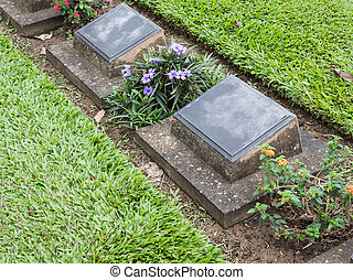 The grave row of the confederate military cemetery. - The...