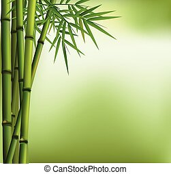 The Green  bamboo