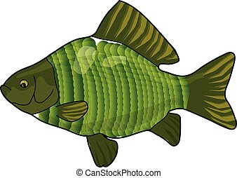 The green crucian on a white background.