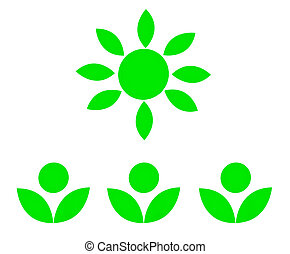 The Green flower with green sun isolated on white background