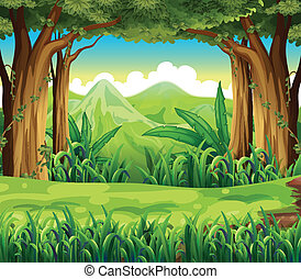 The green forest - Illustration of the green forest