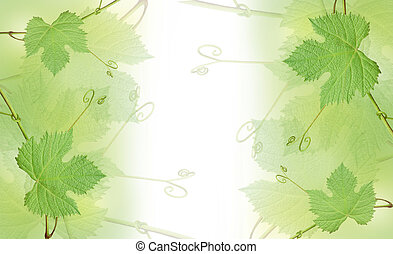 The green grape leaf border on a white background