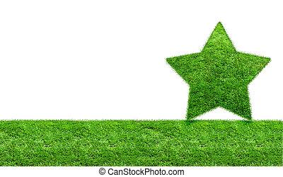 The Green Grass Star