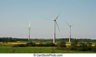 The green grassy field with windmills