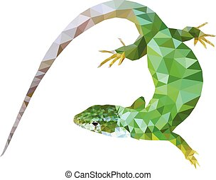 green lizard low poly design eps 10