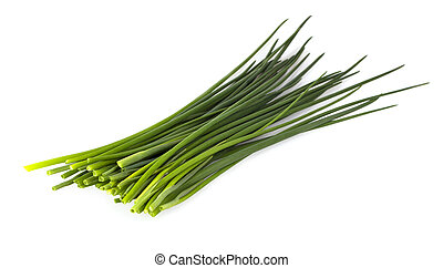 Green onion isolated on the white background - The Green ...