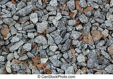 macadam - the grey macadam with brown leaves