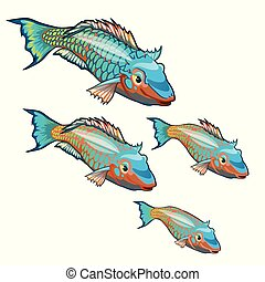 The growth stage of fancy fish with colorful scales isolated on a white background. Cartoon vector close-up illustration.