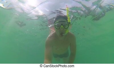 the guy bathe in the sea with fish. Scuba Diving in Masks....