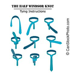 The half windsor tie knot instructions isolated on white background. Guide how to tie a necktie. Flat illustration in vector