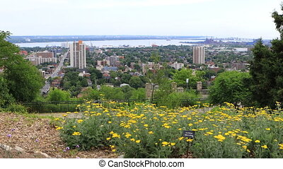 Hamilton, Canada, skyline with flowers in foreground