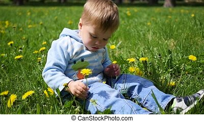 the happy child sits in a field of dandelions. Game of the child in the open air