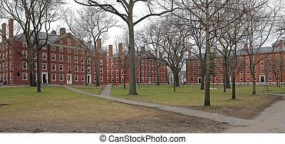 the Harvard Yard in Cambridge (Massachusetts, USA) at winter time