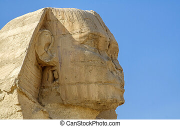 The head of the Sphinx.