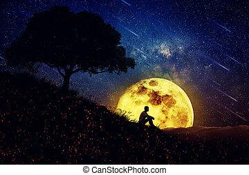The Healing Power of Nature (Night Scene)