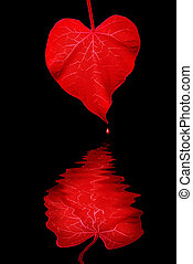 The Heart Makes Waves - Deep Red Heart Shaped Morning Glory...