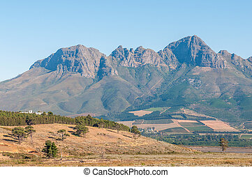 The Helderberg (clear mountain) near Somerset West, South Africa