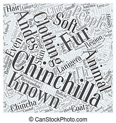 The History of the Chinchilla Word Cloud Concept