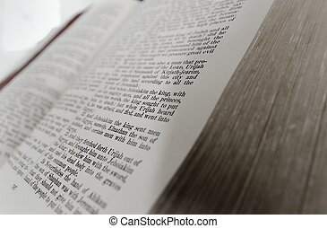 The Holy Bible Says.....