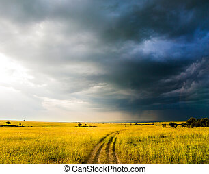 Storm clouds over a grassy savannah. The famous Masai Mara Reserve in Kenya. The vast expanses of the Horn of Africa. The concept of ecological, exotic, extreme and photo tourism