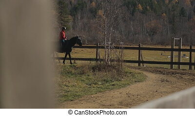 The horse is walking in the circle road of the paddock with the female jockey on its back.