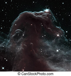 The Horsehead Nebula is a dense cloud of gas and dust...