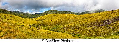 The Horton Plains. Panorama - Beautiful view of The Horton...