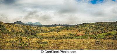 The Horton Plains - Morning at Horton Plains. Panorama
