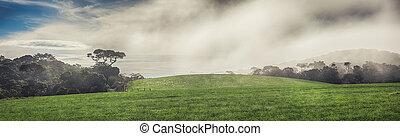 The Horton Plains - Foggy morning at Horton Plains. Panorama
