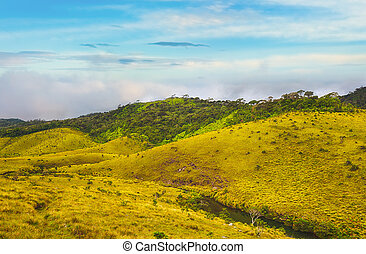 The Horton Plains - Beautiful view of The Horton Plains.