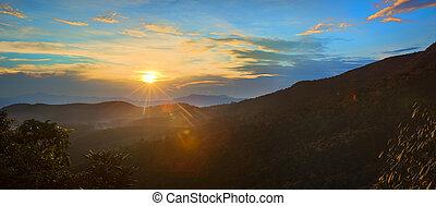 The Horton Plains. Sunrise - Foggy sunrise at Horton Plains....
