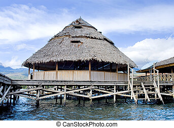 The house established on piles. Lake Sentani