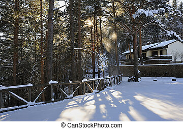 The house in winter on the forest