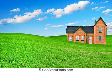 The house on a grass under and dark blue sky