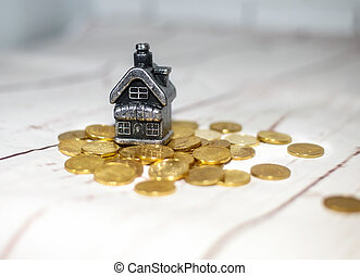 The house stands on a pile of coins, the concept of cash...