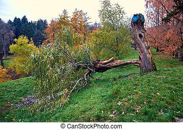 The Hryshko National Botanical Garden